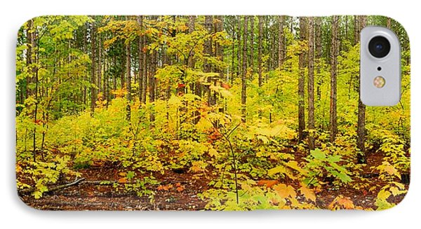 Woodland Panorama Phone Case by Michael Peychich