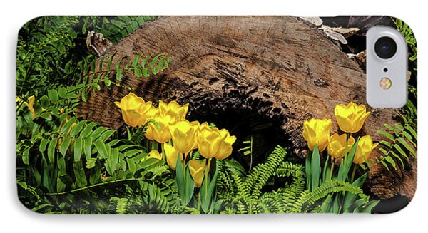 Woodland Tulip Garden IPhone Case by Tom Mc Nemar