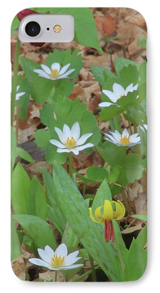 Woodland Wildflowers IPhone Case by John Burk