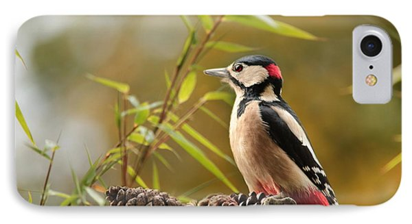 Woodpecker 3 IPhone Case by Heike Hultsch