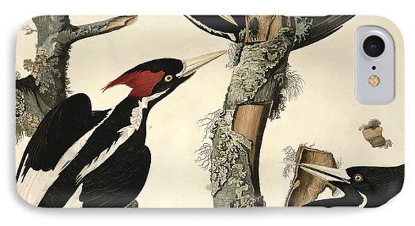 Woodpecker IPhone Case by John James Audubon