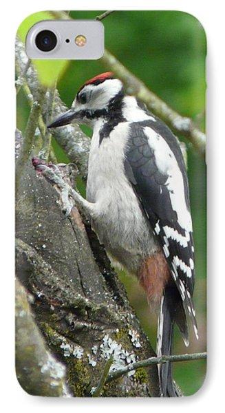 Woodpecker Phone Case by Valerie Ornstein
