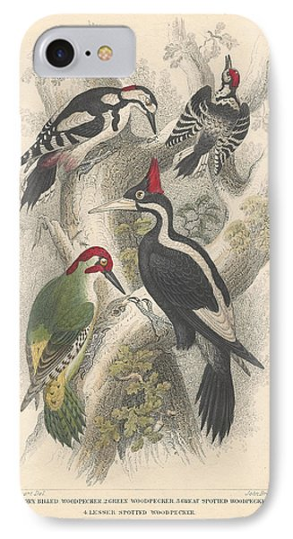Woodpeckers IPhone Case by Rob Dreyer