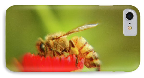 IPhone Case featuring the photograph Worker Bee by Micah May