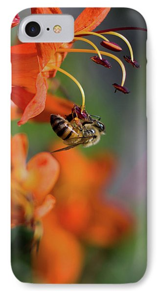 Working Bee IPhone Case by Stelios Kleanthous
