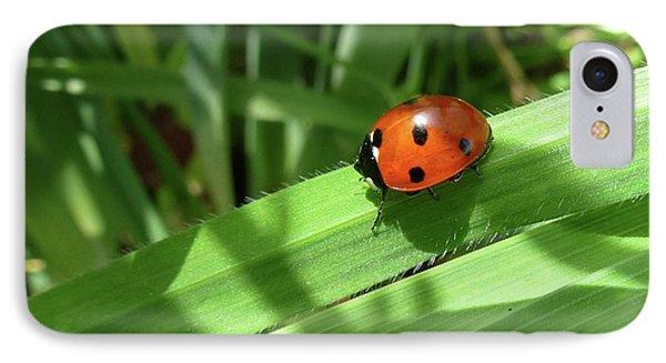 World Of Ladybug 1 Phone Case by Jean Bernard Roussilhe