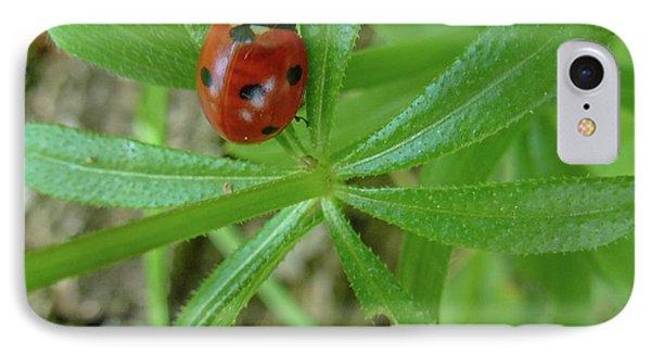 World Of Ladybug 3 Phone Case by Jean Bernard Roussilhe