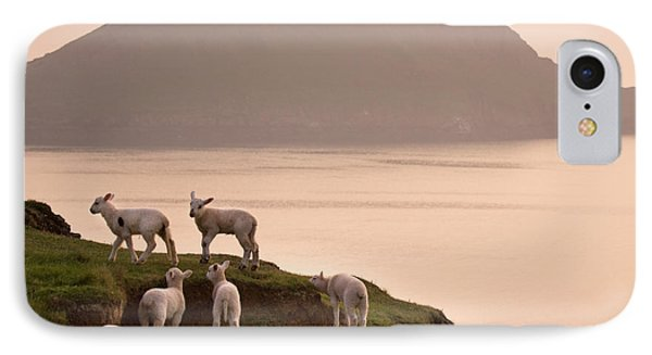 Sheep iPhone 7 Case - Worms Head by Angel Ciesniarska