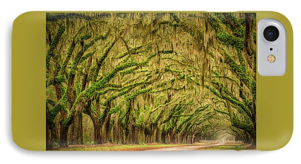 Wormsloe Drive IPhone Case by Phyllis Peterson
