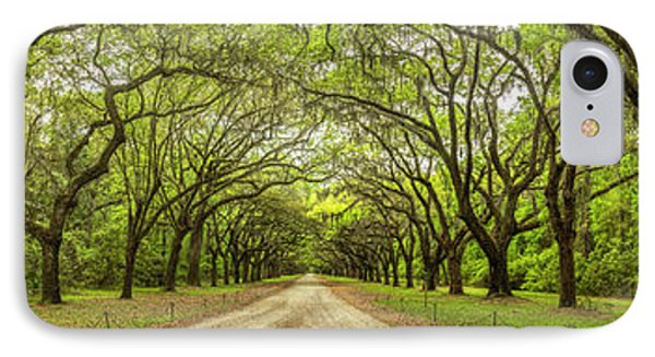 Wormsloe Path IPhone Case by Jon Glaser