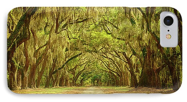 Wormsloe Plantation Oaks IPhone Case by Priscilla Burgers