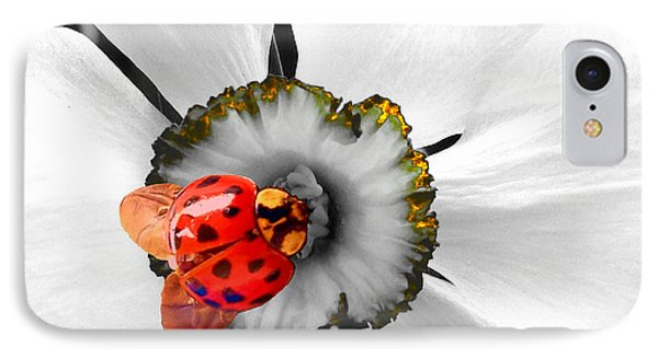 Wow Ladybug Is Hot Today IPhone Case