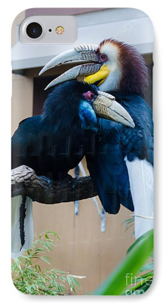Wreathed Hornbills IPhone Case by Donna Brown