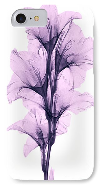 X-ray Of A Gladiola Flower IPhone Case