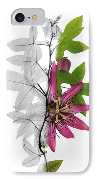 X-ray Of A Passion Flower Phone Case by Ted Kinsman