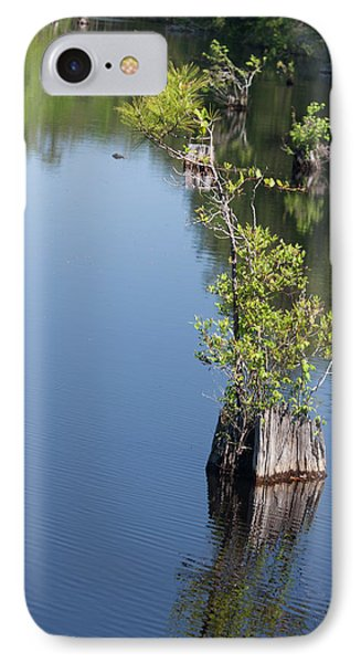 IPhone Case featuring the photograph Yawkey Wildlife Refuge - Cat Island by Suzanne Gaff