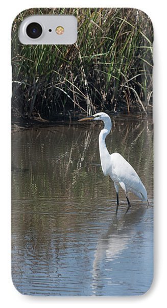 IPhone Case featuring the photograph Yawkey Wildlife Refuge - Great White Egret II by Suzanne Gaff