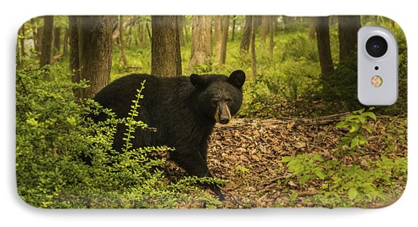Yearling Black Bear IPhone Case