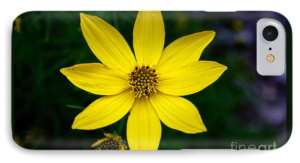 Yellow IPhone Case by Adrian LaRoque
