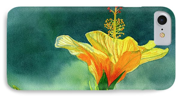 Yellow And Gold Hibiscus With Background Color IPhone Case