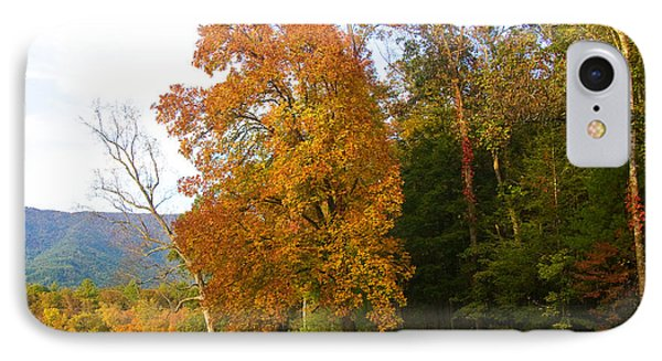 IPhone Case featuring the photograph Yellow And Red Tree by Bob Decker