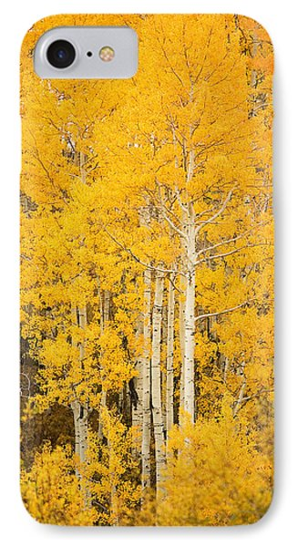 Yellow Aspens IPhone Case by Ron Dahlquist - Printscapes