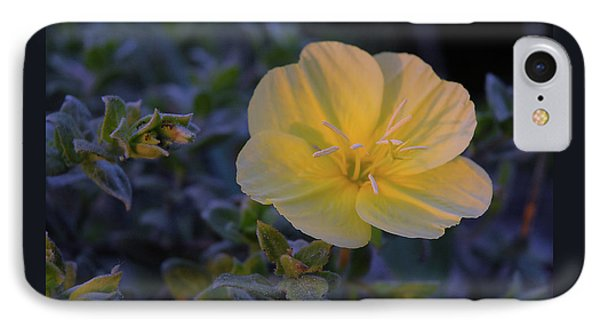 IPhone Case featuring the photograph Yellow Beach Evening Primrose by Marie Hicks