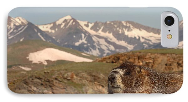 Yellow-bellied Marmot In Mountain Meditation IPhone Case by Max Allen