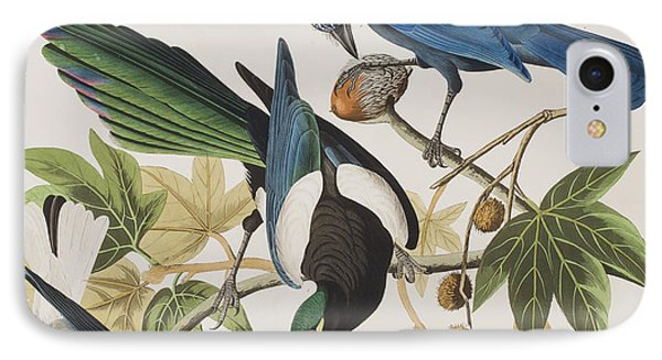 Magpies iPhone 7 Case - Yellow-billed Magpie Stellers Jay Ultramarine Jay Clark's Crow by John James Audubon