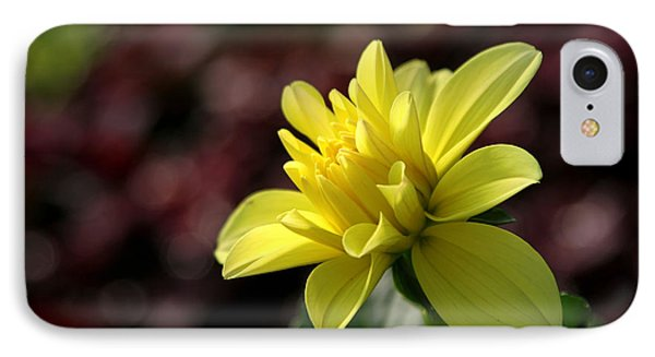Yellow Bloom IPhone Case by Robert Och