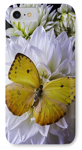 Yellow Butterfly On White Dahlia IPhone Case by Garry Gay