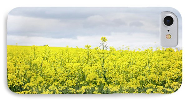 IPhone Case featuring the photograph Yellow Canopies by Ivy Ho