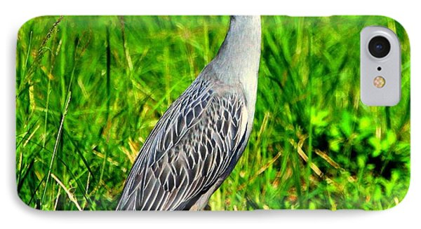 Yellow Crested Night Heron Catches A Fiddler Crab IPhone Case by Barbara Bowen