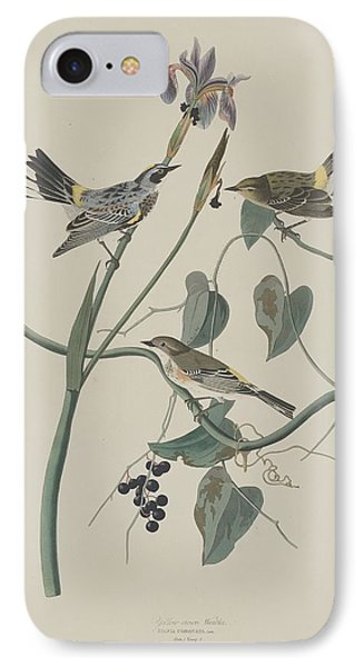 Yellow-crown Warbler IPhone 7 Case by Rob Dreyer