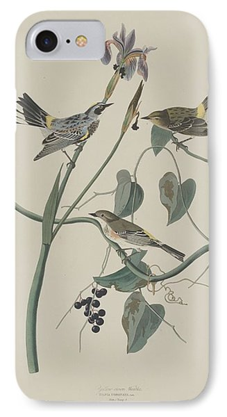 Yellow-crown Warbler IPhone Case by Rob Dreyer