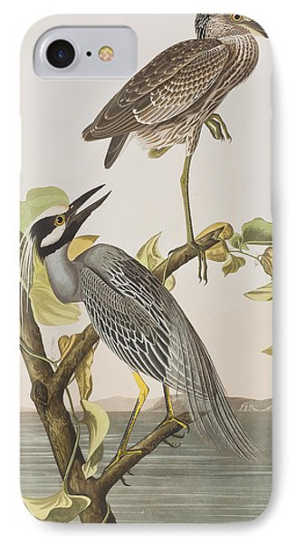 Yellow Crowned Heron IPhone Case by John James Audubon