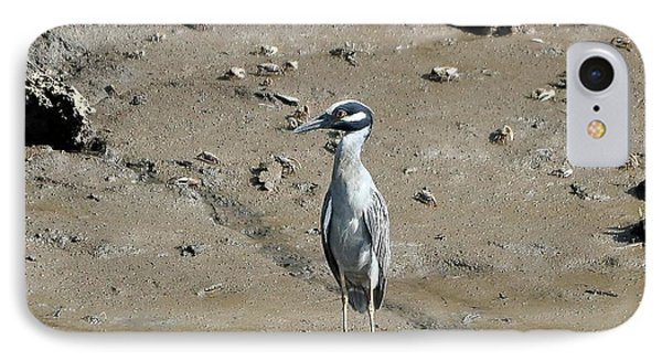Yellow-crowned Night-heron Phone Case by Al Powell Photography USA