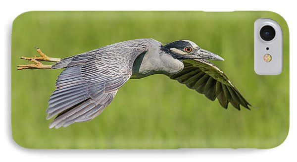 Yellow-crowned Night-heron In Flight IPhone Case by Morris Finkelstein