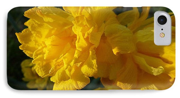 Yellow Daffodils IPhone Case by Jean Bernard Roussilhe