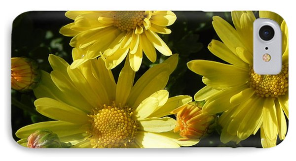 Yellow Daisies Phone Case by John Parry