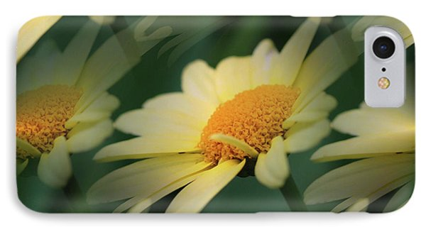 IPhone Case featuring the photograph Yellow Daisies by Smilin Eyes  Treasures