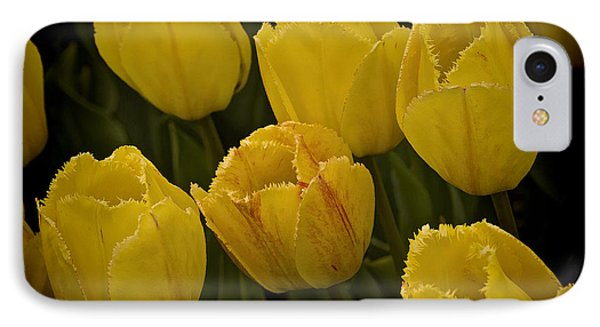 IPhone Case featuring the photograph Yellow Detailed Tulip by Michael Flood
