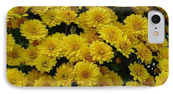 Yellow Fall IPhone Case by Shirley Heyn