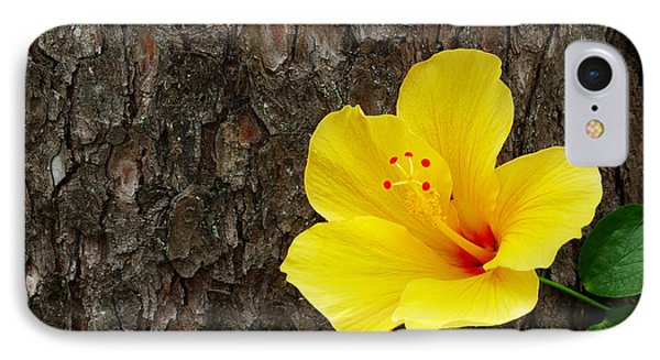 Yellow Flower IPhone Case by Carlos Caetano