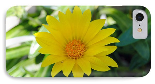 Yellow Flower IPhone Case by Isam Awad