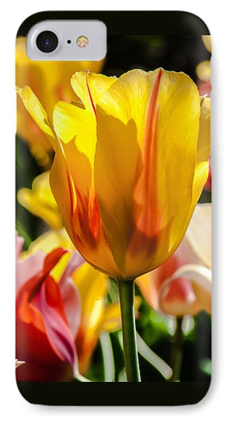 Yellow For You IPhone Case by Jim Moore