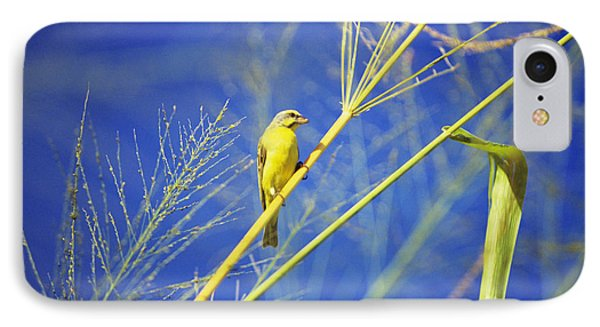 Yellow Fronted Canary Phone Case by Bob Abraham - Printscapes