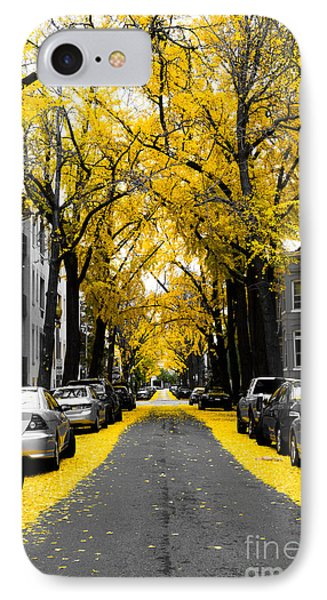 Yellow Gingko Trees In Washington Dc IPhone Case by Paul Frederiksen