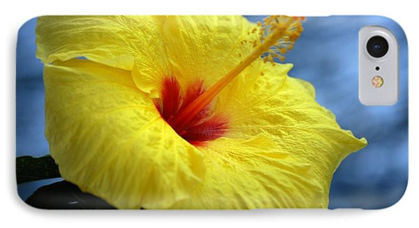 IPhone Case featuring the photograph Yellow Hibiscus by Debbie Karnes