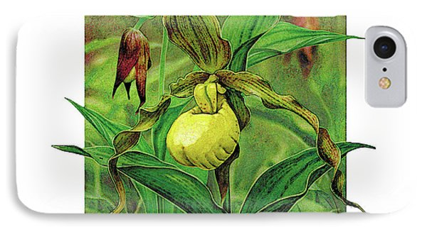 Yellow Lady Slipper Phone Case by JQ Licensing